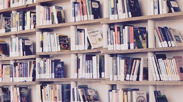 お手軽にフランス語を学ぶためのオススメの電子書籍(kindle unlimited)まとめ