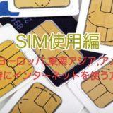 SIM使用編|海外(ヨーロッパ,東南アジア,アメリカ)旅行時にインターネットを使う方法